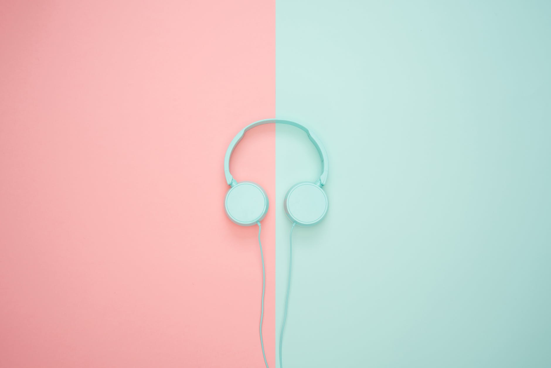 white headphone